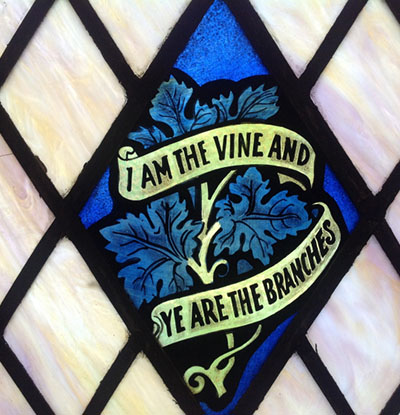FCC Showing up and Giving Thanks - I Am The Vine and Ye Are The Branches - Featured