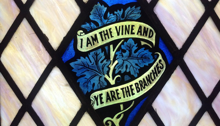 FCC Showing up and Giving Thanks - I Am The Vine and Ye Are The Branches
