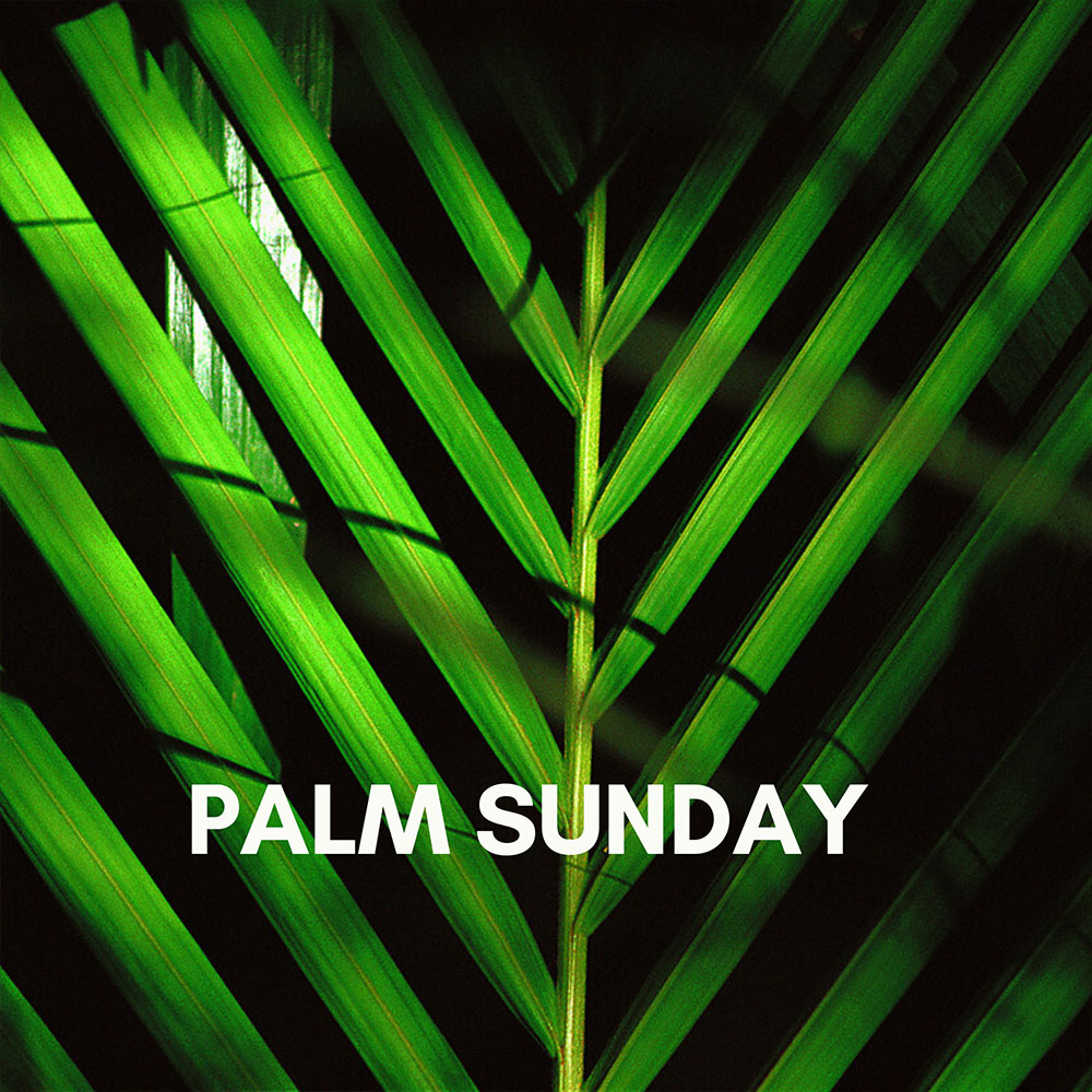 First Christian Church of Charlotte Palm Sunday